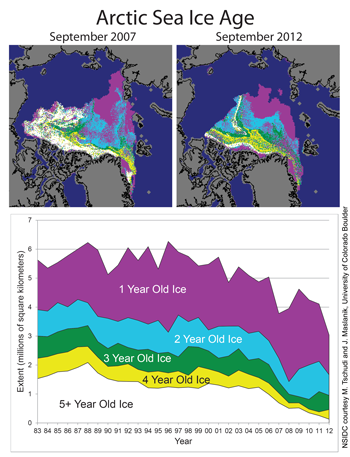 Figure 9: These images from September 2007 (top, left) and September 2012 (top, right) show the decline of multiyear ice since the previous record minimum extent was set in 2007. The chart at bottom shows the changes in multiyear ice from 1983 to 2012. NSIDC (National Snow and Ice Data Centre)