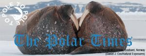 The Polar Times_October2014